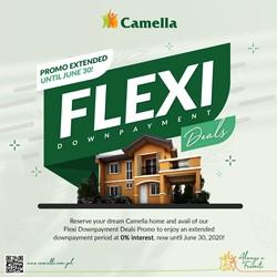 Camella Cebu News
